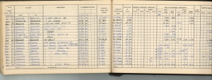 FHP_PILOT_FLIGHT_LOGBOOK_PAGE_39